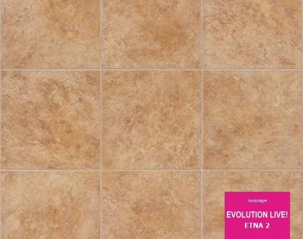 Линолеум Evolution Etna 2