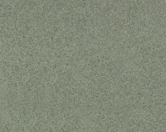 Линолеум Strong Plus Scala 6275