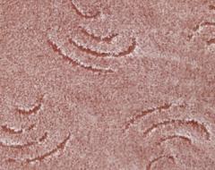 Kenya 293 персиковый